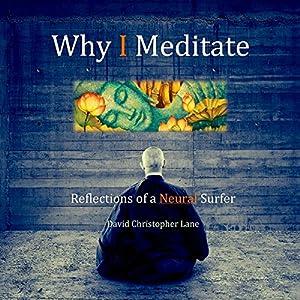 Why I Meditate Audiobook