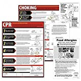 ERIAU, Training & Safety Awareness Posters Subject: Labor Law Training Program Title: Restaurant Labor Law Poster Kit - Iowa (3 Piece Set)