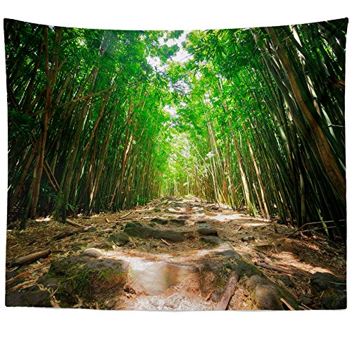 Westlake Art - Wallpaper Tree - Wall Hanging Tapestry - Picture Photography Artwork Home Decor Living Room - 68x80 Inch (B81DD)