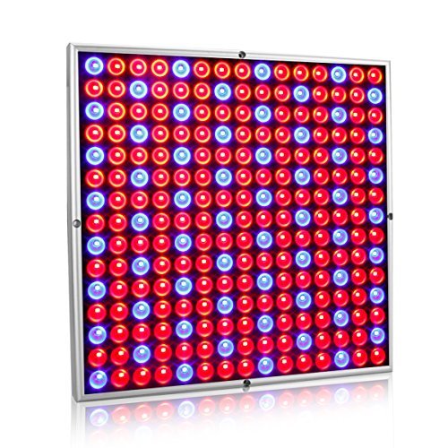 Exmate 45W LED Grow Light for Indoor Plants Growing Lamp 225 LEDs Red Blue Plant Lights Bulb Panel for Greenhouse Tent Indoor Succulent Plants Seedlings Flowering Veg Bloom Hydroponic Garden ()