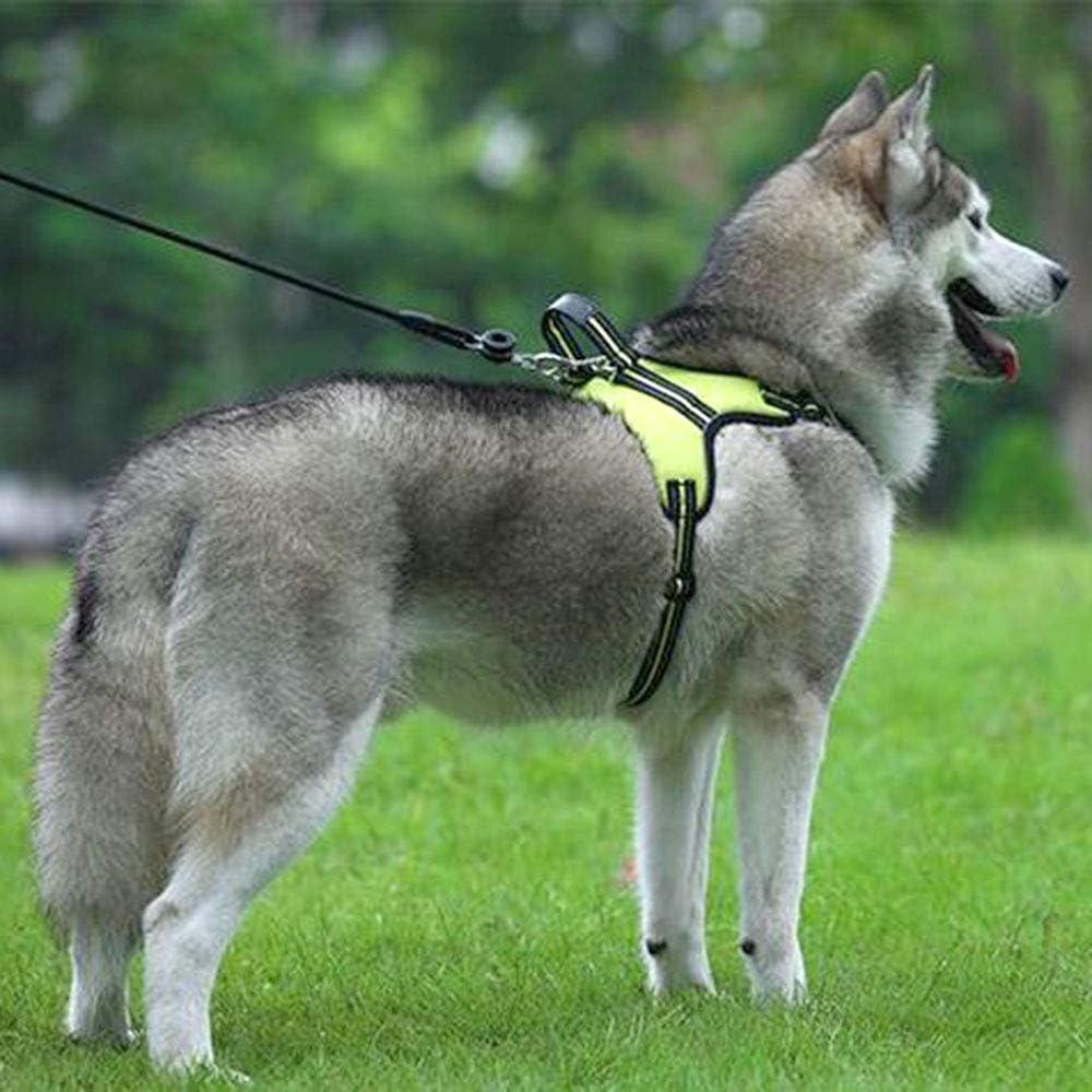 Qklovly Perro Arnés para perro con asa Arneses acolchados ...