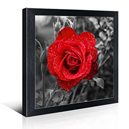c0155c7fee6 Mofutinpo Black and White Flower Wall Art with Frames Red Rose Canvas Print  for Bedroom Bathroom