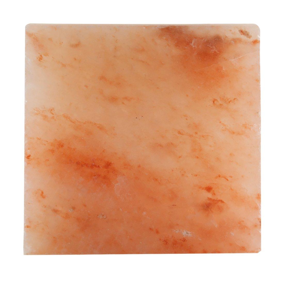 Evolution Salt - Himalayan Salt Slab 8x8x1.5 7-8 lbs. by Evolution Salt