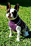 "Alpaca Wool Hand made ""Anden"" Dog Sweater Size:Large"