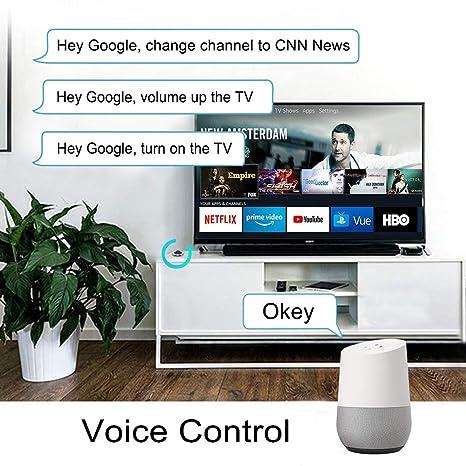 EACHEN Mando A Distancia por Infrarrojos Universal WiFi + IR Función 2,4 GHz Compatible con TV y DVD con Tuya/Smart Life App, Funciona con Alexa Google Home IFTTT Voice Control: Amazon.es: Electrónica