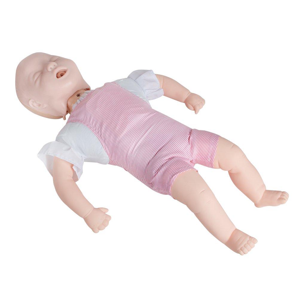Amazon.com: zorvo Infant cuerpo Infarct modelo Enseñanza ...