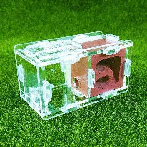 KDGPUM Nuovo Design Ant Nest DIY con Area Alimentazione Ant Farm Acrilico Plaster Villa Pet Mania per House Ants Insect Ant Workshop: 03