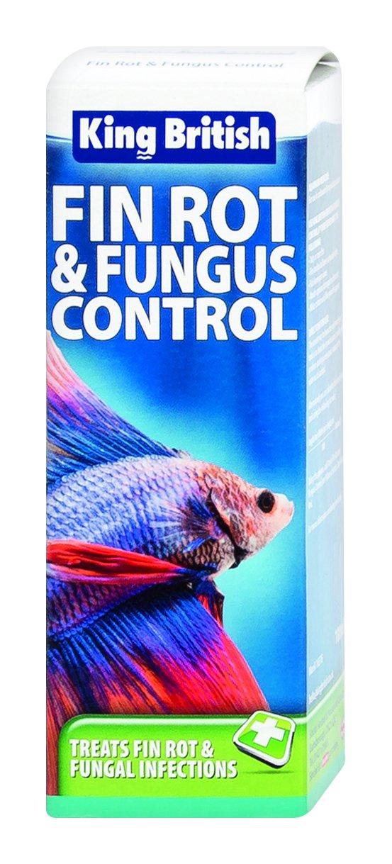 King British Produit contrôle de moisissures pour bassins à poissons BEAMY 17907