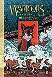 Warriors: SkyClan and the Stranger #2: Beyond the Code (Warriors Manga)