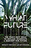 img - for What Future: The Year's Best Ideas to Reclaim, Reanimate & Reinvent Our Future book / textbook / text book