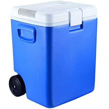 Amazon.es: GEGEQUNAERYA Refrigerador para coche (30 l/barra de ...