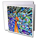 3dRose Set of 12 Greeting Cards, Peacock and Feathers Orange Artistic Graphic C (gc_178535_2)