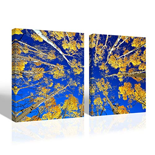 Mon Art Yellow Aspen Tree Forest to Blue Sky Canvas Print Landscape Picture Wall Art Maple Scene Artwork for Bedroom Living Room Modern Contemporary Decoration Home Decor,12x16,2Pcs Set,Framed,Golden ()