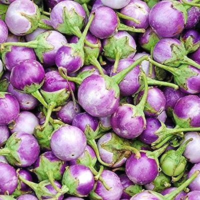 Italian Rosa Bianca Eggplant Garden Seeds - 500 Seeds - Non-GMO, Heirloom Vegetable Gardening Seed - Egg Plant