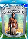 Cover Image for 'Waterboy , The'