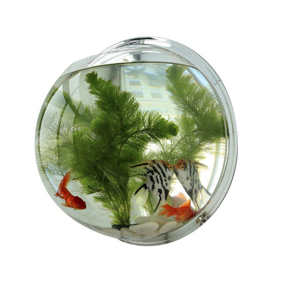 Funnuf Wall Mounted Acrylic Fish Bowl Bubble Clear Hanging Tank Aquarium Plant Pot Mirror Bottom 14.5''