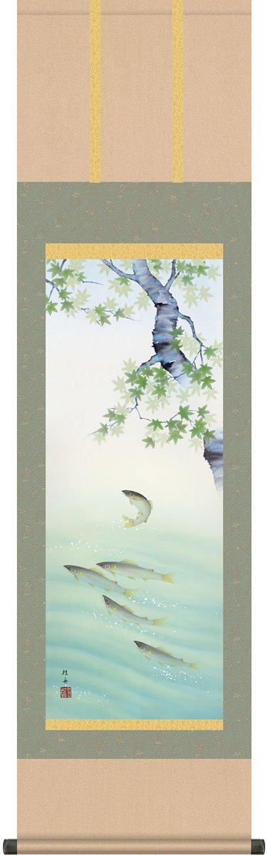 掛軸(掛け軸) 楓に鮎 長江桂舟作 尺三立 約横44.5cm×縦164cm B079YZ14SJ