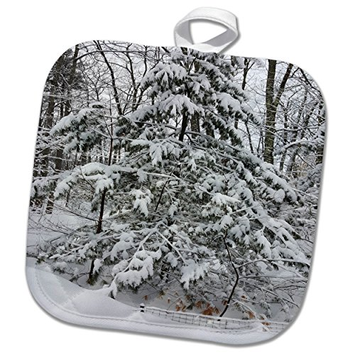 3dRose TDSwhite – Winter Seasonal Nature Photos - Woods After Snowstorm Winter Weather - 8x8 Potholder (phl_285065_1) by 3dRose (Image #2)
