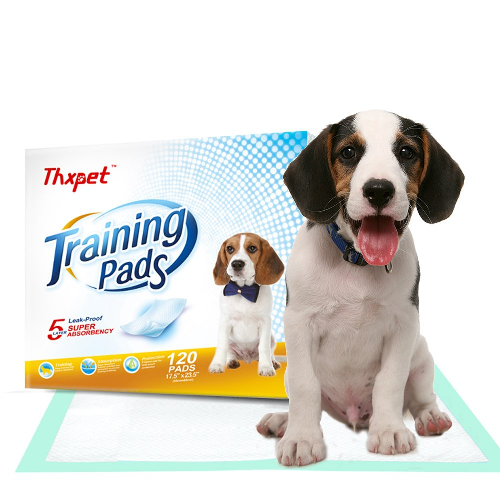 Thxpet Pet Puppy Training Pads 120 Count 17.5''x 23.5'' Dog Pee Potty Pad Wee Wee Pad Super Absorbent Leak Proof