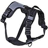 TransPaw Gear Happy Harness | Escape-Proof Walking Harness | Like 3 Harnesses in 1 | Designed for Comfort and Freedom of Move