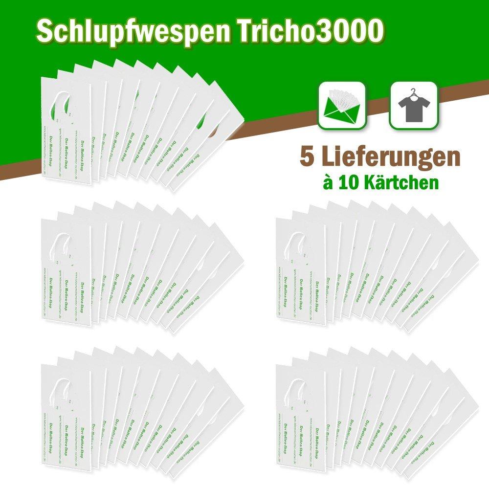 Contra polillas polillas cartoncillos 10 x 5 Kit Pack Suministros: Amazon.es: Jardín