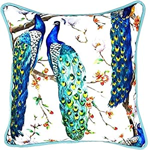 61jG6HNOSFL._SS300_ 100+ Coastal Throw Pillows & Beach Throw Pillows