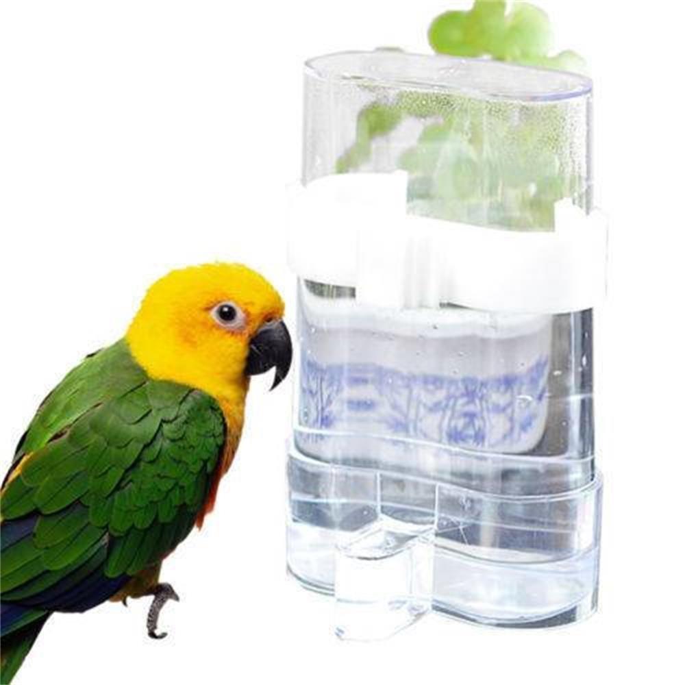 Ashley city Mascotas Aves Jaula automático acrílico semilla Agua Alimentos alimentador Loro Cockatiel Canarias
