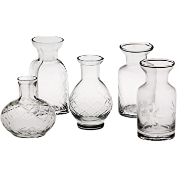 Amazon Chive Caterpillar Small Clear Glass Bud Vase For