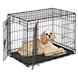 "Medium Dog Crate | Midwest iCrate 30"" Double Door Folding Metal Dog Crate 
