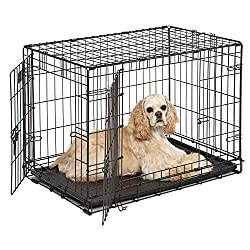 "Dog Crate | Midwest Icrate 30"" Double Door Folding Metal Dog Crate W Divider Panel, Floor Protecting Feet & Leak-proof Dog Tray 