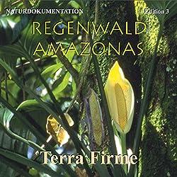 Terra Firme: Im Reich der Baumriesen (Regenwald Amazonas 3)