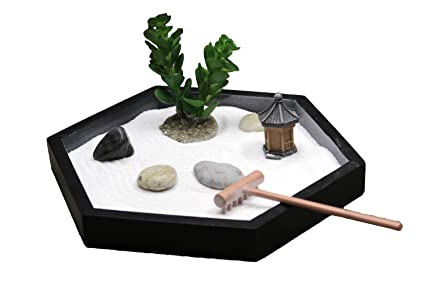 Image result for Succulent zen garden