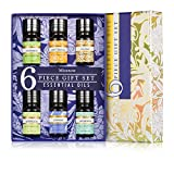 #9: Essential Oils Set by Missnow, Aromatherapy Essential Oils,  Therapeutic Grade Oils, 6 Bottles/ 0.35 fl.oz each ( Peppermint, Lavender, Sweet Orange, Lemongrass, Eucalyptus, Tea Tree)