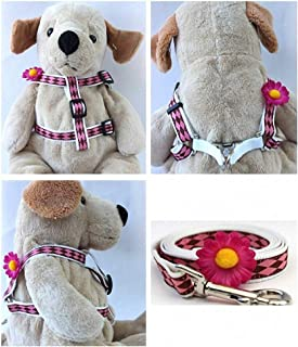 "product image for Diva-Dog 'Gerber Daisy Pink' Custom 5/8"" Wide Dog Step-in Harness with Plain or Engraved Buckle, Matching Leash Available - Teacup, XS/S"