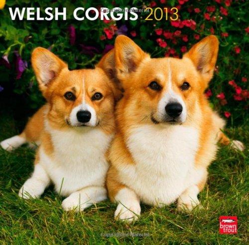 Read Online Welsh Corgis 2013 Square 12X12 Wall Calendar (Multilingual Edition) PDF
