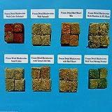 Blackworms, Assorted 8 Type Sampler Pack. Freeze Dried California Blackworms