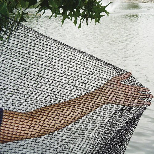 GREEN VISTA'S DELUXE BIRD BARRIER NET / NETTING - 32x32 Feet - Protects Fruit Trees, Berry Shrubs, Vegetables, Flowers and More - 1/4x3/8 Inch Mesh by Green Vista Water Gardens