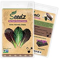 CERTIFIED ORGANIC SEEDS (Appr. 550) - Red Giant Mustard Greens Seeds - Open Pollinated Vegetable Seeds - Organic, Non Hybrid Garden Seeds - USA
