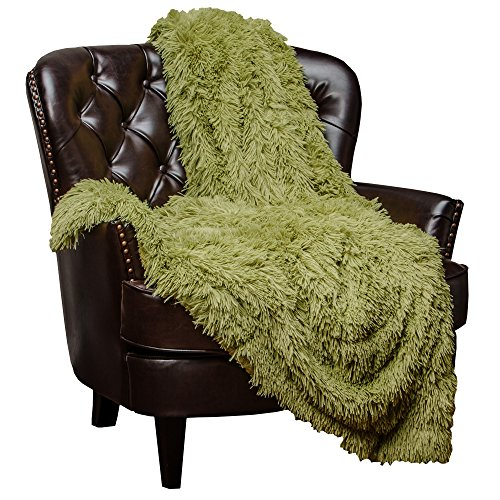 (Chanasya Super Soft Shaggy Longfur Throw Blanket | Snuggly Fuzzy Faux Fur Lightweight Warm Elegant Cozy Plush Sherpa Fleece Microfiber Blanket | for Couch Bed Chair Photo Props - 50