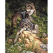 Dimensions Needlecrafts Paintworks Paint By Number, Wild and Free Wolves