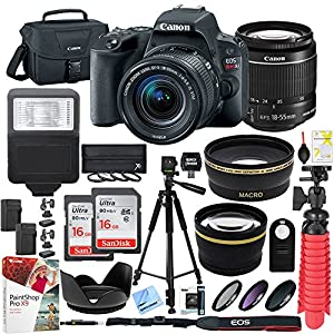 Canon EOS Rebel SL2 24MP SLR Digital Camera w/EF-S 18-55mm IS STM Lens Black with Two (2) 16GB SDHC Memory Cards (32GB total) Plus Triple Battery Tripod Cleaning Kit Accessory Bundle