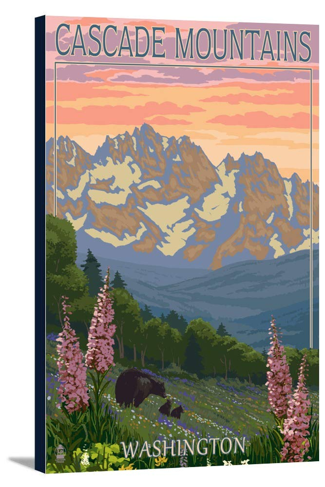 Cascade Mountains、ワシントン – Bears And Spring Flowers 12 x 18 Gallery Canvas LANT-3P-SC-45886-12x18 B018P50BY6  12 x 18 Gallery Canvas
