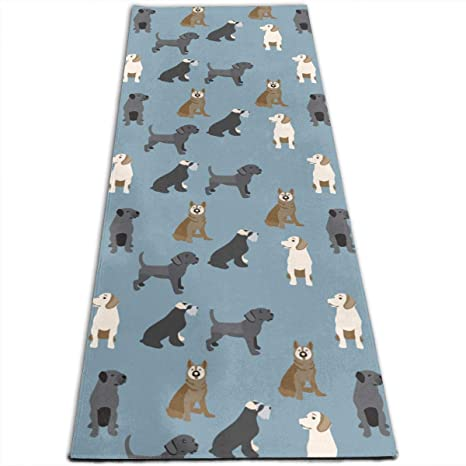 Amazon.com: Dogs Cute Colorful Pattern Printed Yoga Mat ...