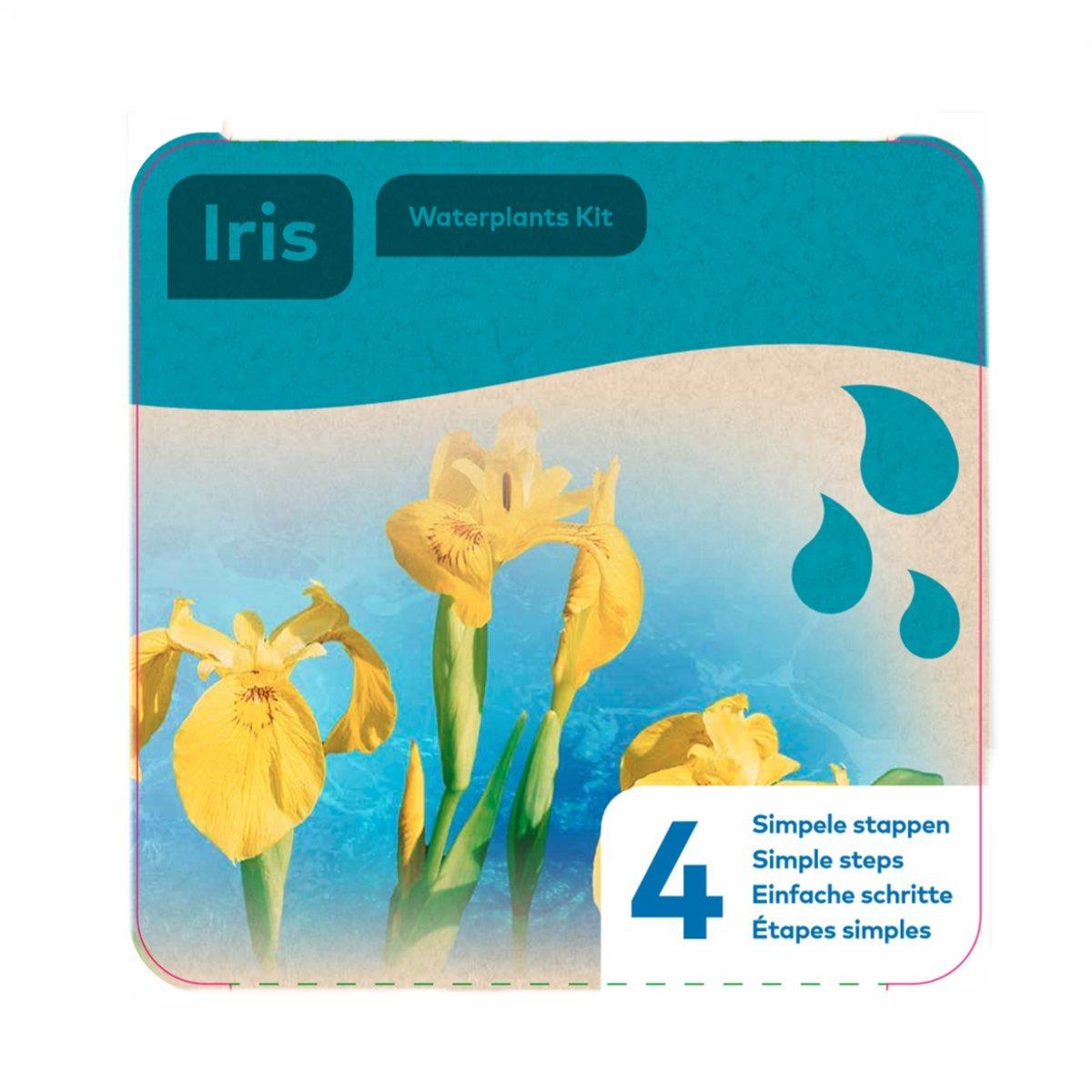 Moerings Waterplants Kit - Yellow Iris