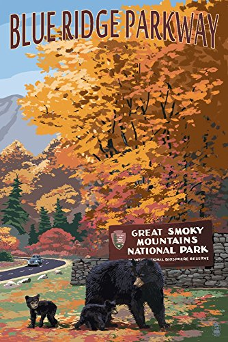 (Blue Ridge Parkway - Great Smokey Mountains Park Entrance and Bear Family (12x18 Art Print, Wall Decor Travel Poster))