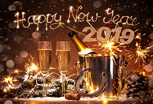 Price comparison product image OFILA Happy New Year 2019 Backdrop 7x5ft New Year Party Photography Background Festival Celebration Horseshoe Lucky Year Champagne Toast Fireworks Photos New Year Studio Portraits Family Shoots Props