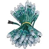 WESIRI WS2811 Diffused Digital RGB LED Pixel Lights Green Wire Individually Addressable Round DIY LED Pixels Module IP68…