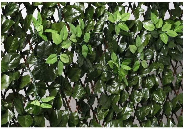 200/x 3/x 100/cm Verde Catral 43040010/Graticcio Estensibile con Foglie e boccioli
