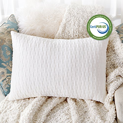 Woven Throw Bamboo (Sable Shredded Memory Foam Pillow for Sleeping Side Sleepers, CertiPUR-US & FDA Registered Hypoallergenic w/Thickened Bamboo Pillowcase for Home & Hotel Collection, Neck Pain Relief, Queen Size)