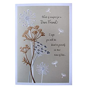 Hallmark sympathy card for friend words of comfort medium hallmark sympathy card for friend words of comfort medium m4hsunfo